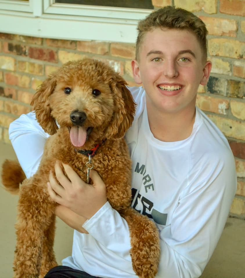 Goldendoodle Puppies Available Now | Mini Goldendoodles from Iowa