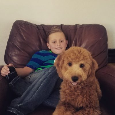 Mini Goldendoodle hanging with son watching TV